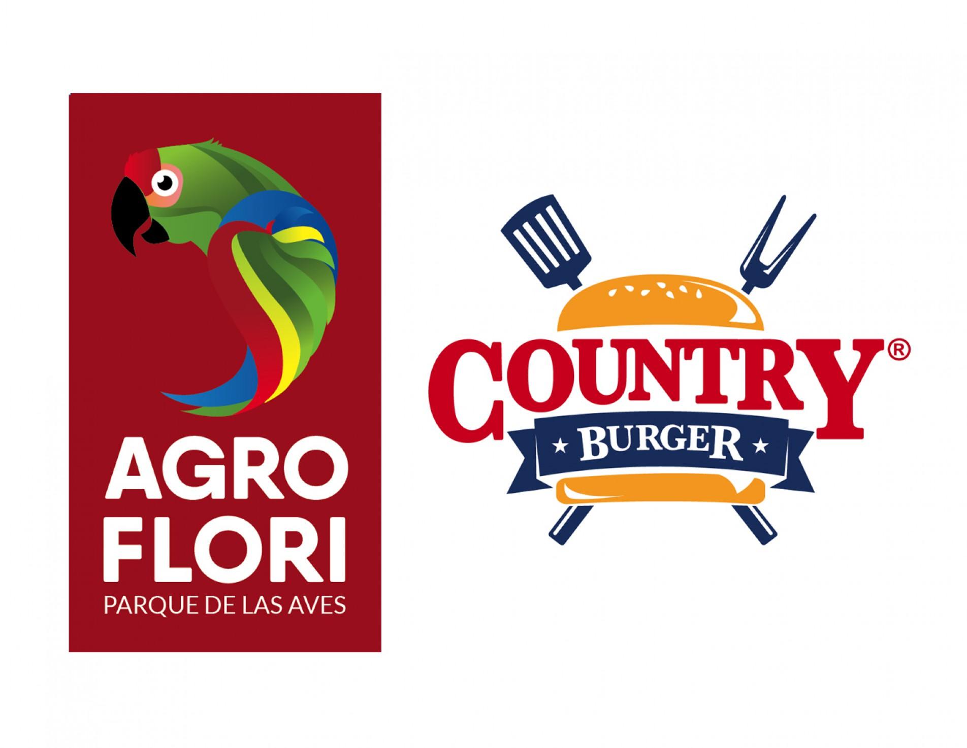 Branding / Identidad Corporativa